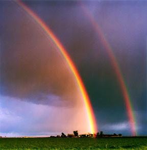 d801e-rainbow-picture-15 (1)